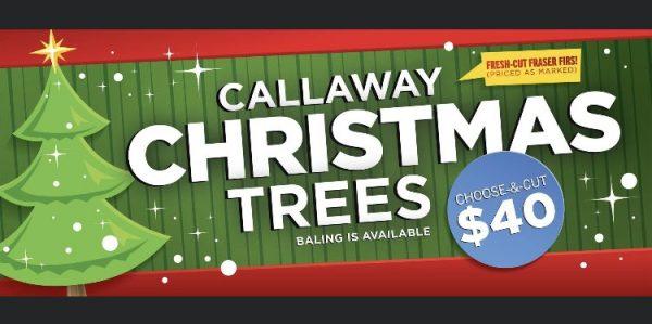 Callaway Christmas Trees