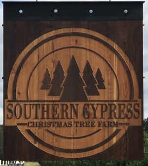 Southern Cypress Christmas Tree Farm