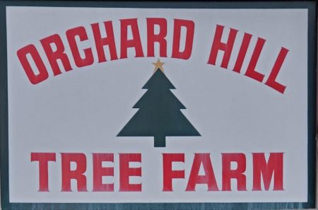 Orchard Hill Tree Farm