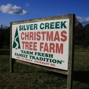 Silver Creek Christmas Tree Farm